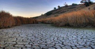 Засуха в Крыму продолжает наносить убытки