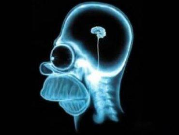 Ученые признали, что человечество постепенно тупеет