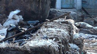 Заводы по утилизации органических отходов держат в заложниках украинских фермеров