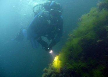 Артефакты с затонувшего у Крыма парохода «Генерал Коцебу» поднимут осенью