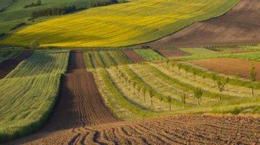 Украинская земля очень скоро начнет дорожать