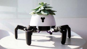 Китаец создал робота, который ухаживает за домашними растениями