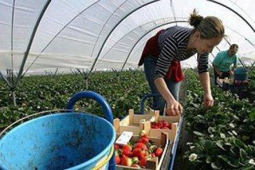 Трудовая миграция из Украины тормозит ее экономический рост