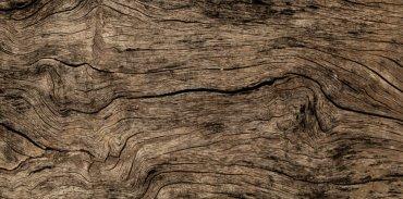 Ученые создали древесину с повышенной устойчивостью к огню и кислоте