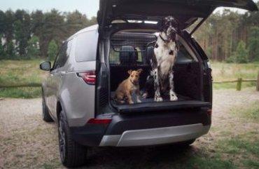 Внедорожники Land Rover будут оснащать душем для собак