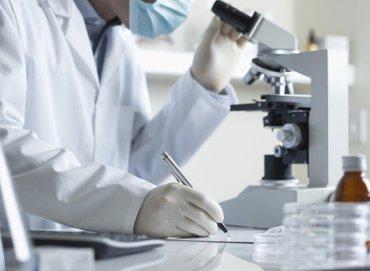 Химики очистят природу от CO₂