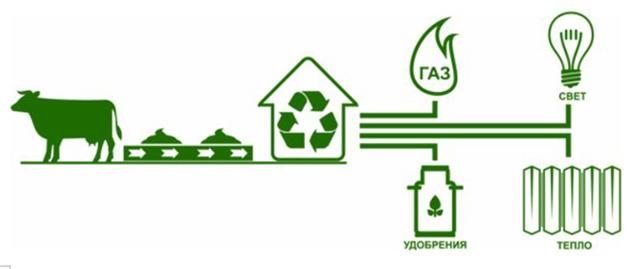 Биогазовые технологии для будущего энергоэффективной страны