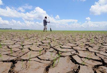 Россию ожидает климатический апокалипсис