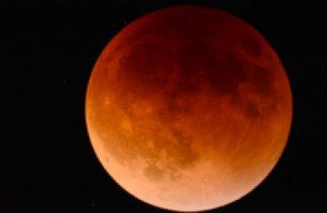 Маск отправит японцев на Луну