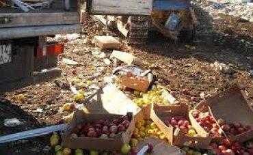 ФСБ провела спецоперацию по уничтожению свежих яблок