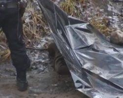 В Тернопольской области найден труп с откушенной рукой