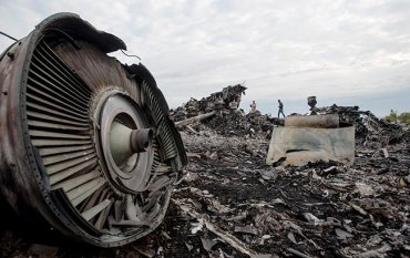 Семьи 55 погибших в катастрофе MH17 подали на Россию в ЕСПЧ