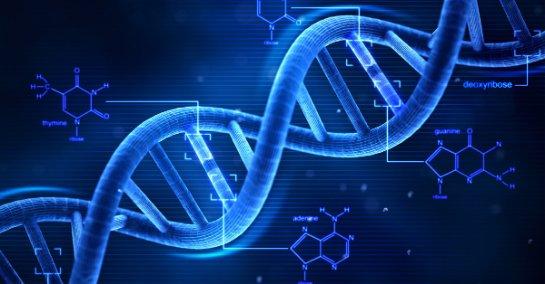 Проведение точного ДНК теста по доступной цене