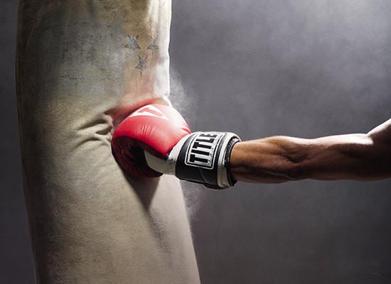 Виды боксерских груш