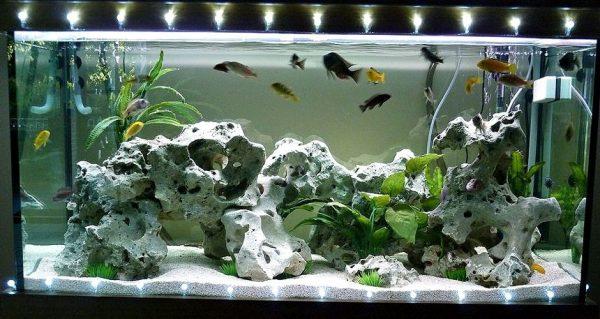Крышка для аквариума – защита от пыли