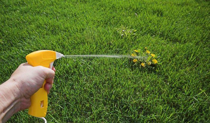 Большой выбор гербицидов сплошного действия