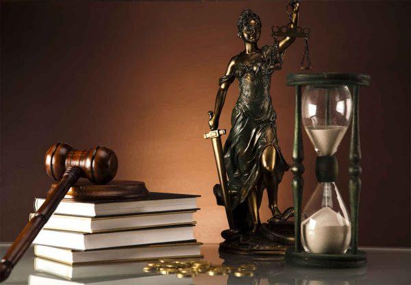 Грамотный юрист на все случаи жизни